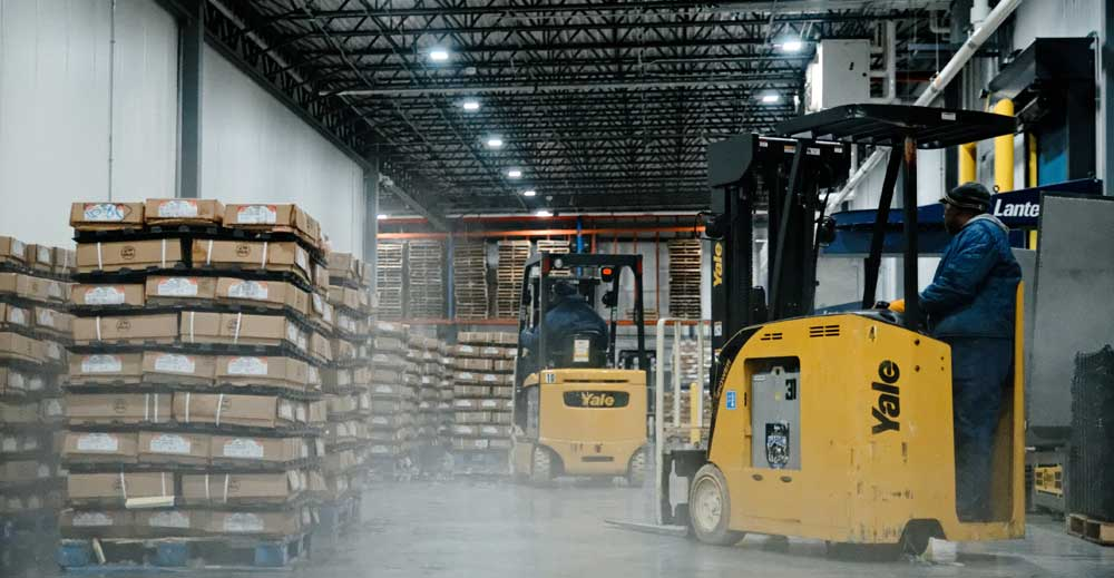 3 Things To Consider About Cold Storage
