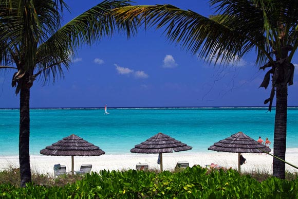 Turks and Caicos: Top 5 Things To See and Do