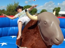 Rodeo Bull Hire For Your Western Themed Party