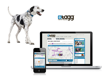 Top 5 Apps For Your Canine Friend