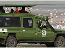 Fancy Desires! Drive It Your Own Way To The Lake Manyara!