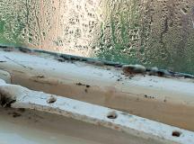 Condensation Treatment