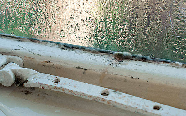Condensation Treatment For Your Home In 10 Easy Steps