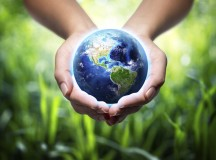 Benefit The Environment With Recycling