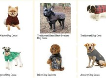 Why Is It A Decent Idea To Purchase Dog Clothes?
