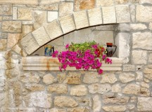 Maintenance and Cleaning Tips For Your Stone Walls