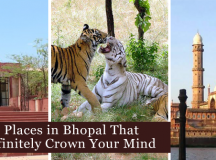 3 Places In Bhopal That Will Definitely Crown Your Mind