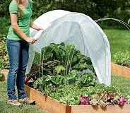 Gardening and Growing In A Greenhouse Throughout Winter