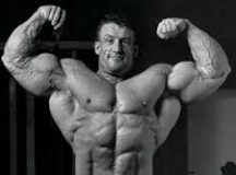 The Real Functions of Steroids in Your Body