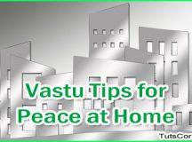 Pallavi Chhelavda Offers The Best Vaastu Tips For Peace In Home