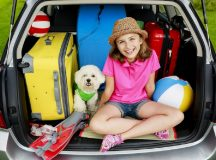 3 Of The Best Reasons Why It's More Fun To Travel With Your Pet (+ Useful Pet Travel Tips)