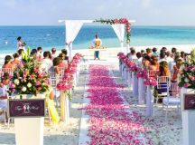 How Do You Envision Your Dream Wedding?